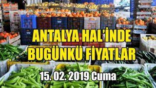 Antalya Hal'inde 15 Şubat 2019 Cuma Günkü Fiyatlar